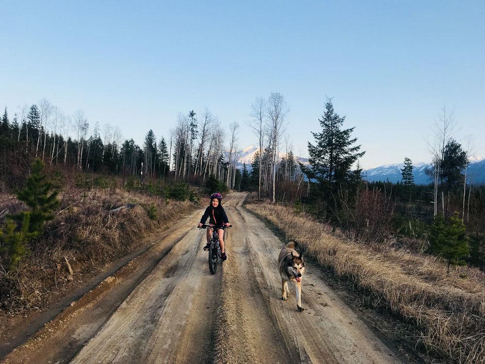 Long way to Swift Creek Trail