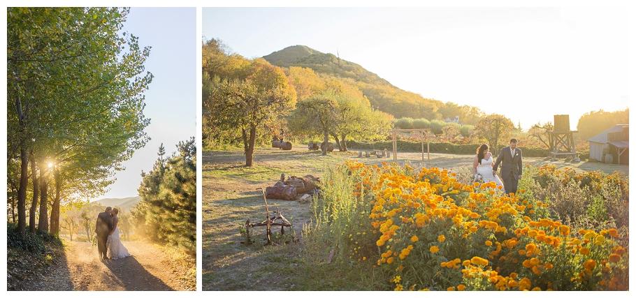 Riley's Farm in Oak Glen Wedding (22)