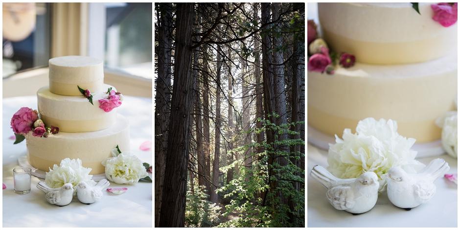 Lake Arrowhead Wedding (30)