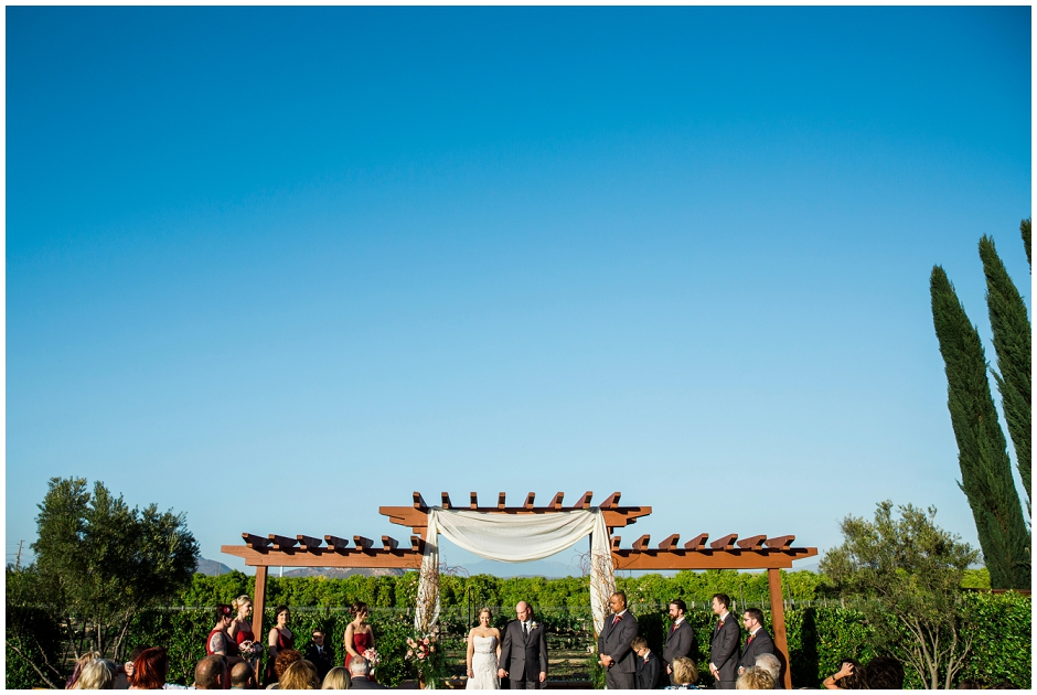 Wiens Family Cellars Wedding (32)
