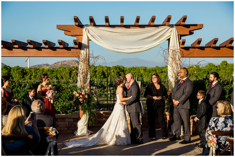 Wiens Family Cellars Wedding (36)