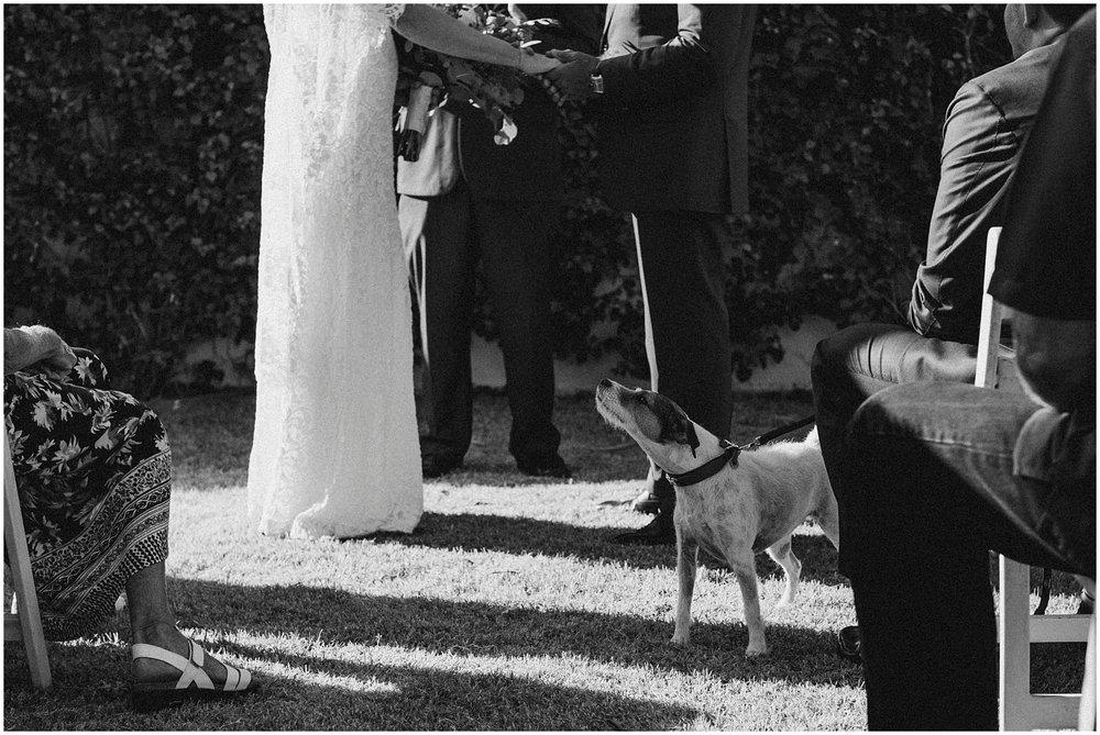 La Quinta Resort Wedding (46).jpg