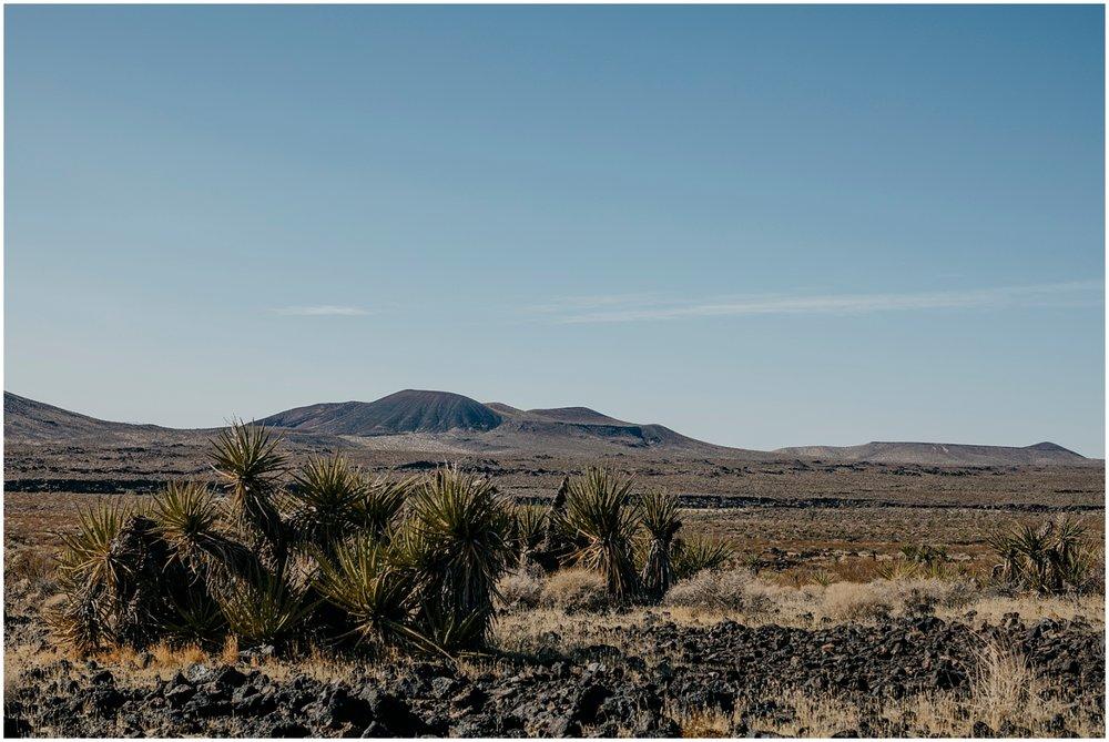 Mojave Desert Elopement (26).jpg