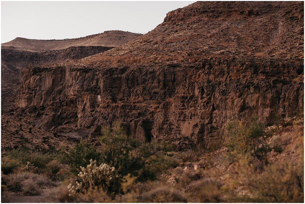 Mojave Desert Elopement (25).jpg