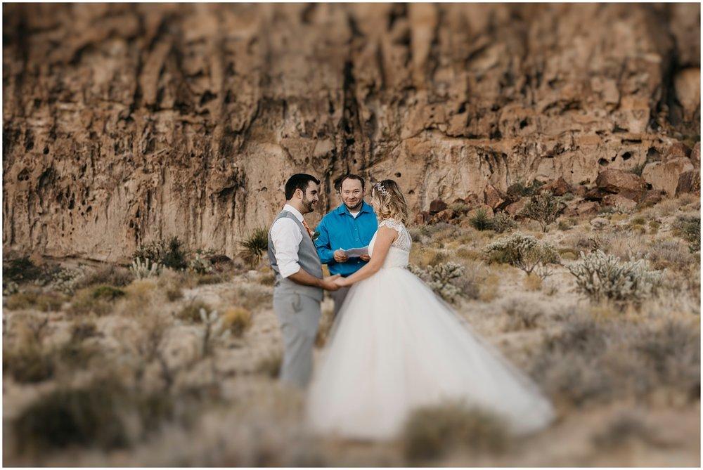 Mojave Desert Elopement (33).jpg