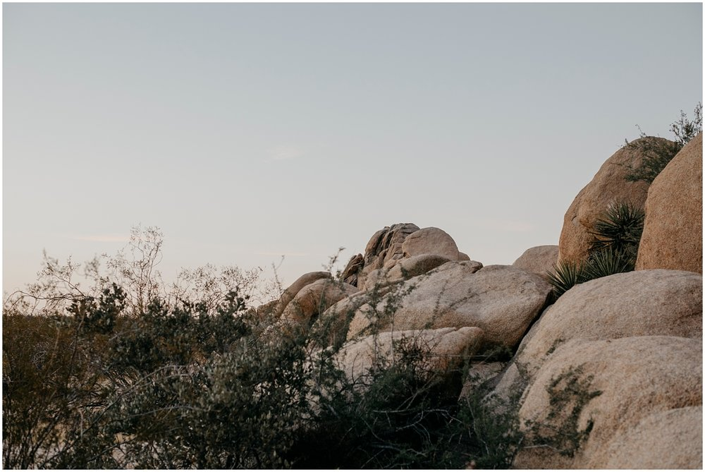 Joshua Tree Wedding (1).jpg