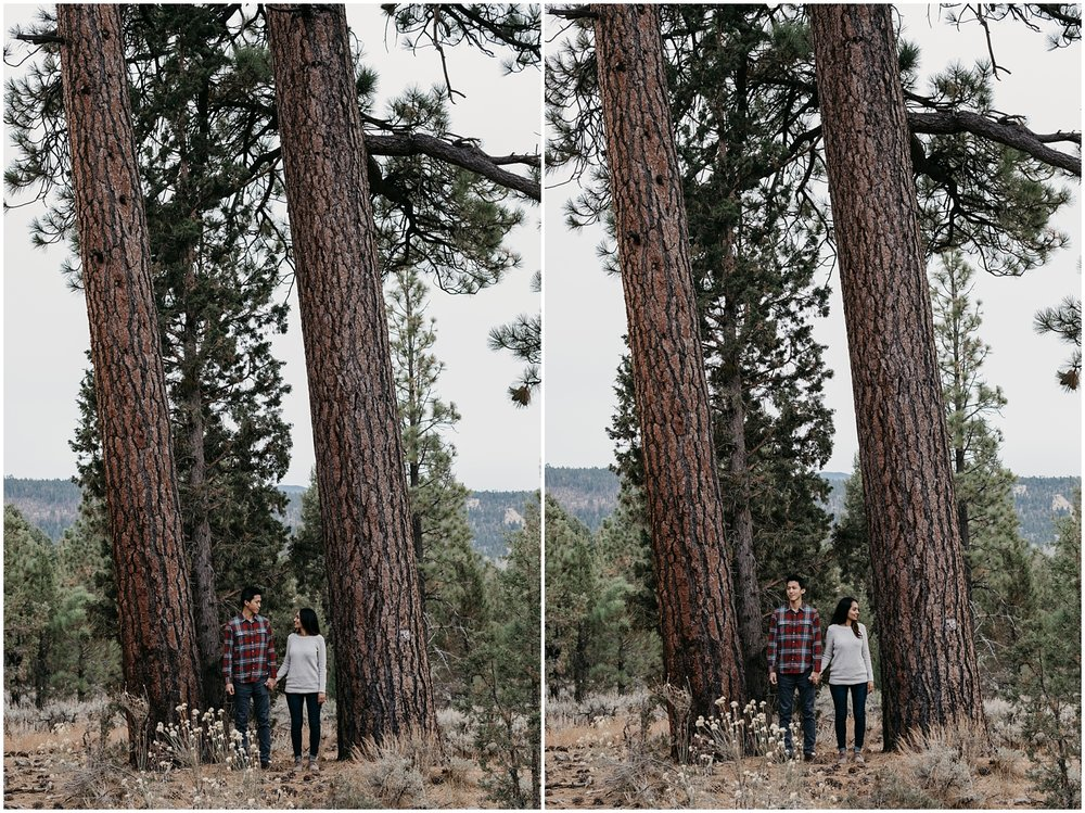 Big Bear Lake Engagement 015.jpg
