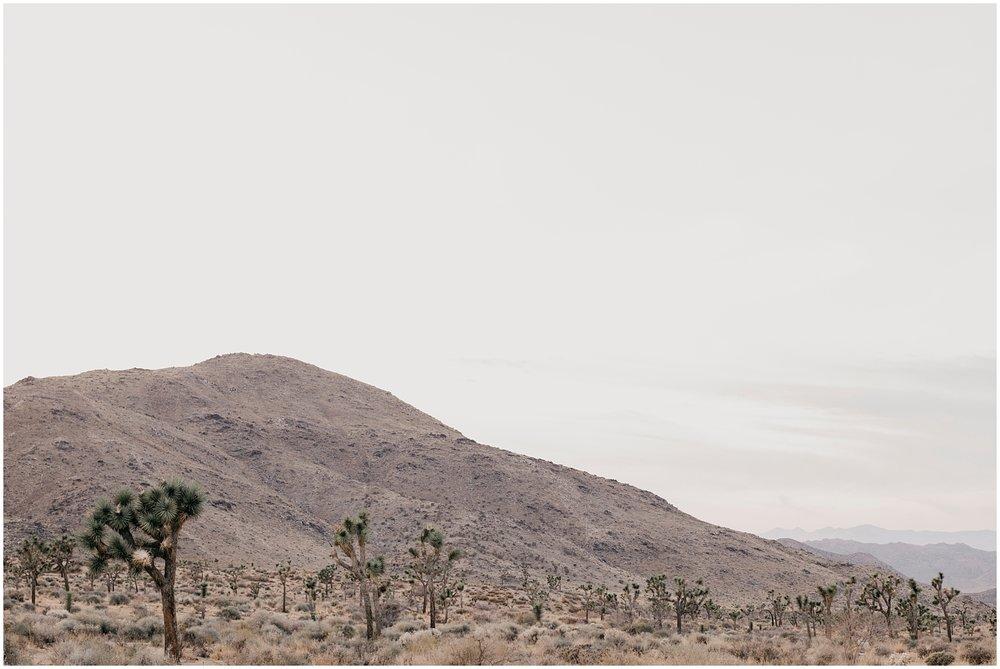 Yucca Valley Engagement 020.jpg