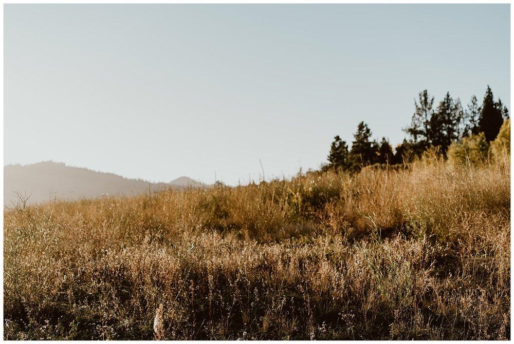 Big Bear Engagement 030.jpg