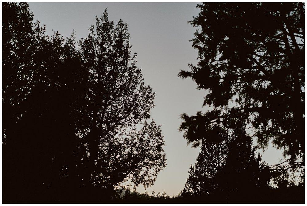 Big Bear Engagement 051.jpg