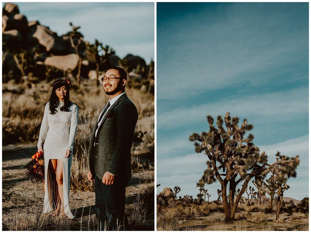 Joshua Tree Park Engagement (27).jpg