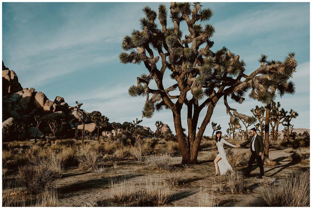 Joshua Tree Park Engagement (28).jpg