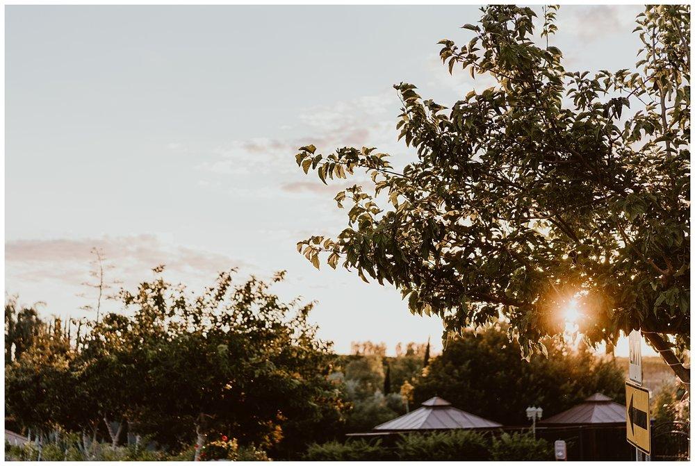 Mount Palomar Temecula Wedding 0104.jpg