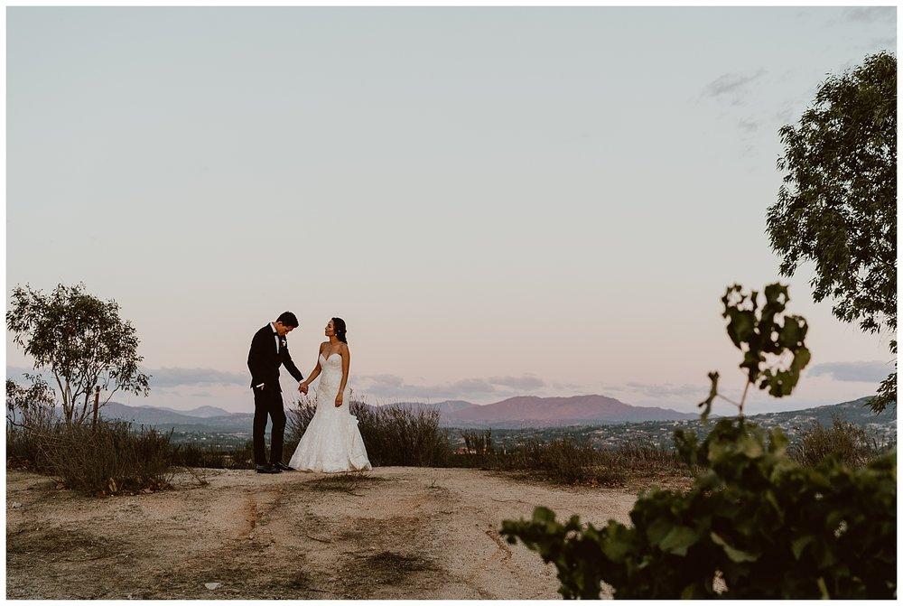 Mount Palomar Temecula Wedding 0128.jpg