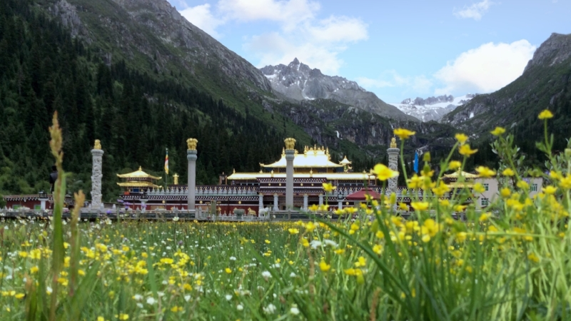 AUGUST 1Dzogchen Monastery - Dzogchen Monastery, one of the six great monasteries of the Nyingma tradition, lies in the