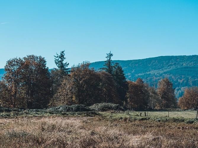Farm Mountains2 small.jpg