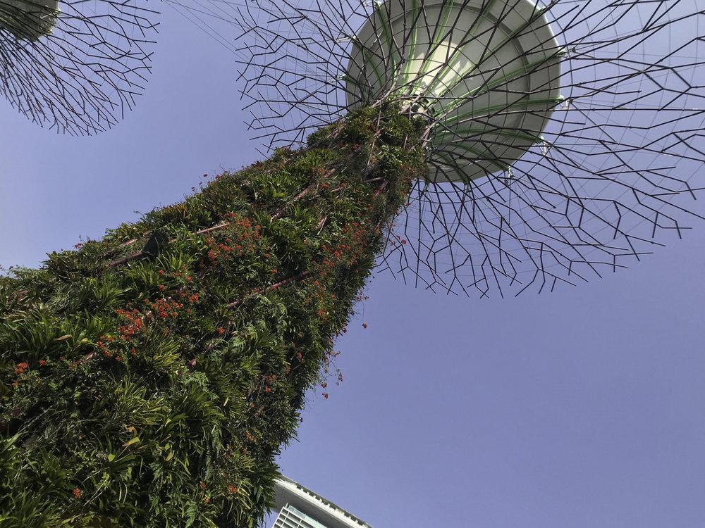 GardensByTheBay-4.jpg