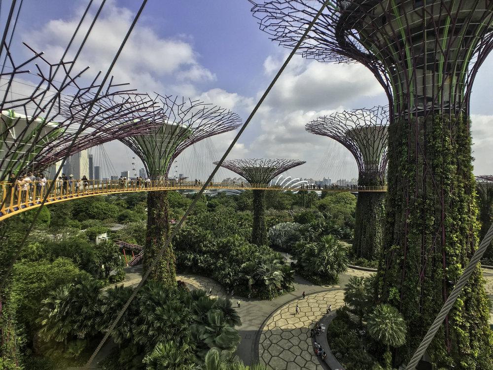 GardensByTheBay-6.jpg