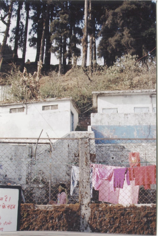 darjeeling 2.jpeg