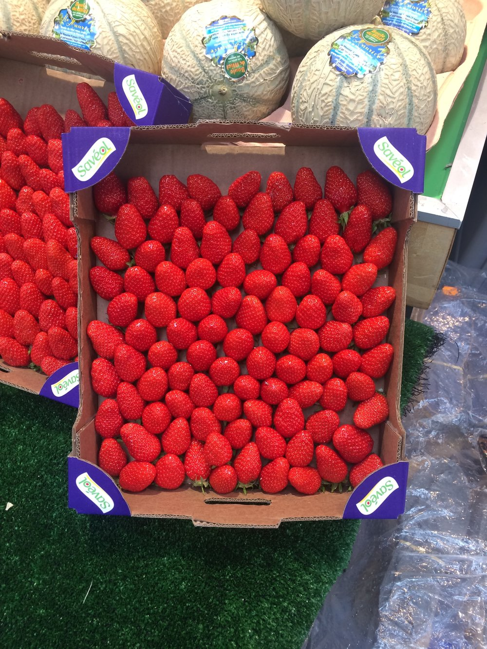 paris strawberries.JPG