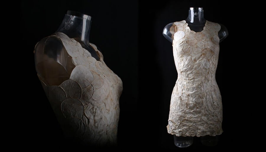 Aniela Hoitink's mycelium dress, created as part of MycoTEX, is currently on display at the Fungal Futures exhibition in Ulrich. [photo courtesy of MycoTEX]