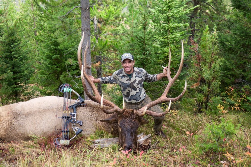 """2016 Archery hunt with 372"""" P&Y bull"""