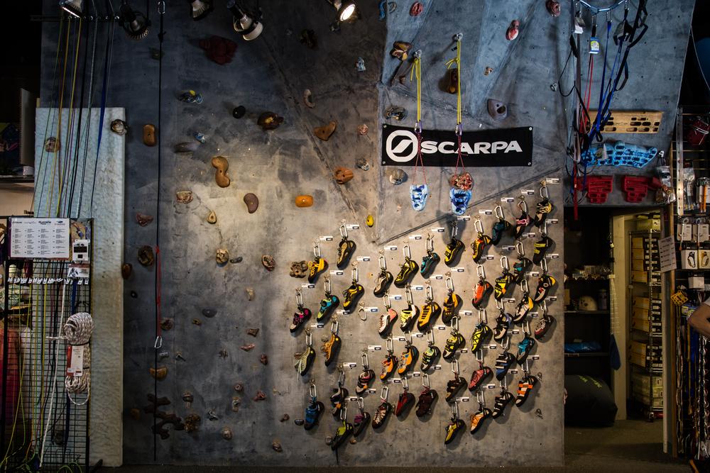 Head on shoe wall.jpg