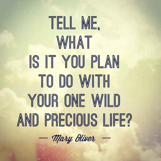 one-wild-precious-life-quote.jpg