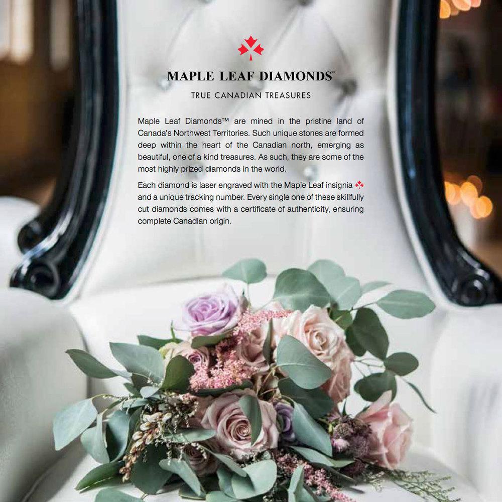 bridal2015-25.jpg