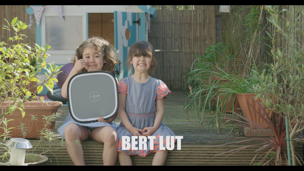 Bert LUT.jpg