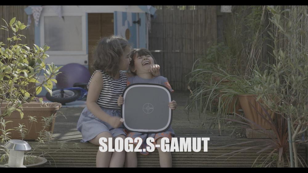 Slog2.jpg