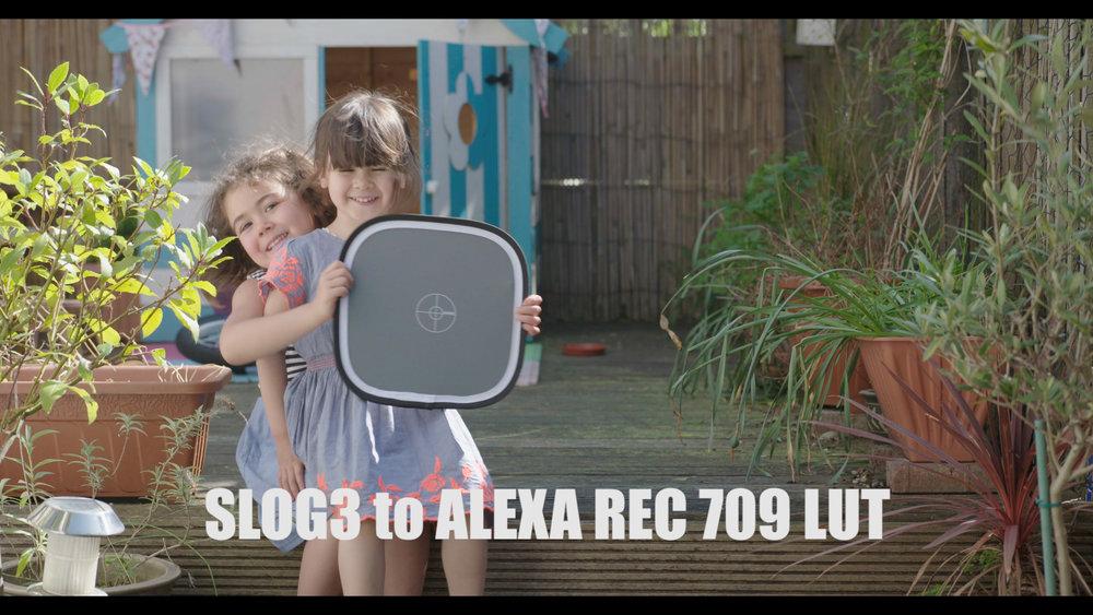 Slog3 to Alexa 709.jpg