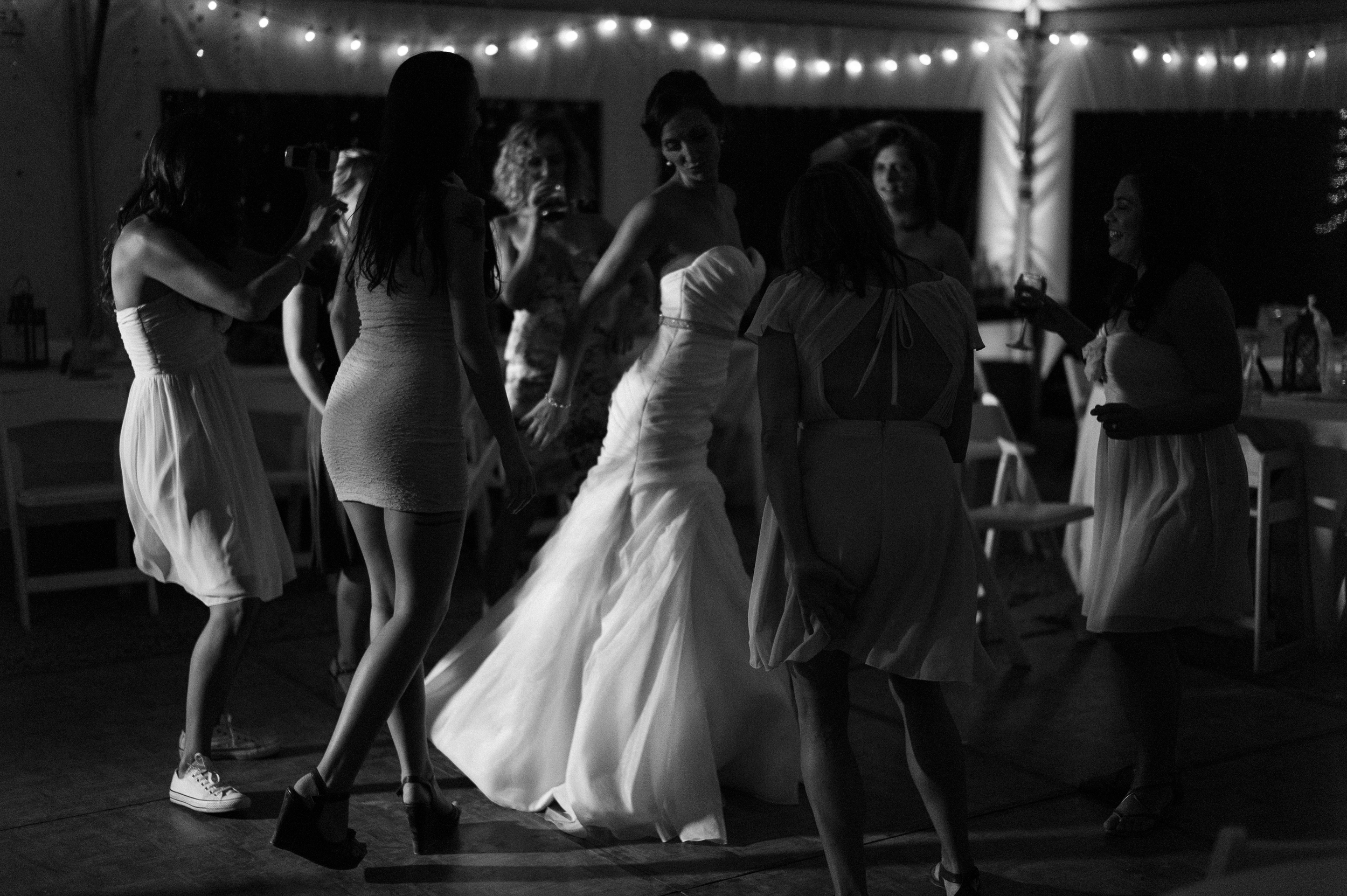 treana_lawren_wedding-604
