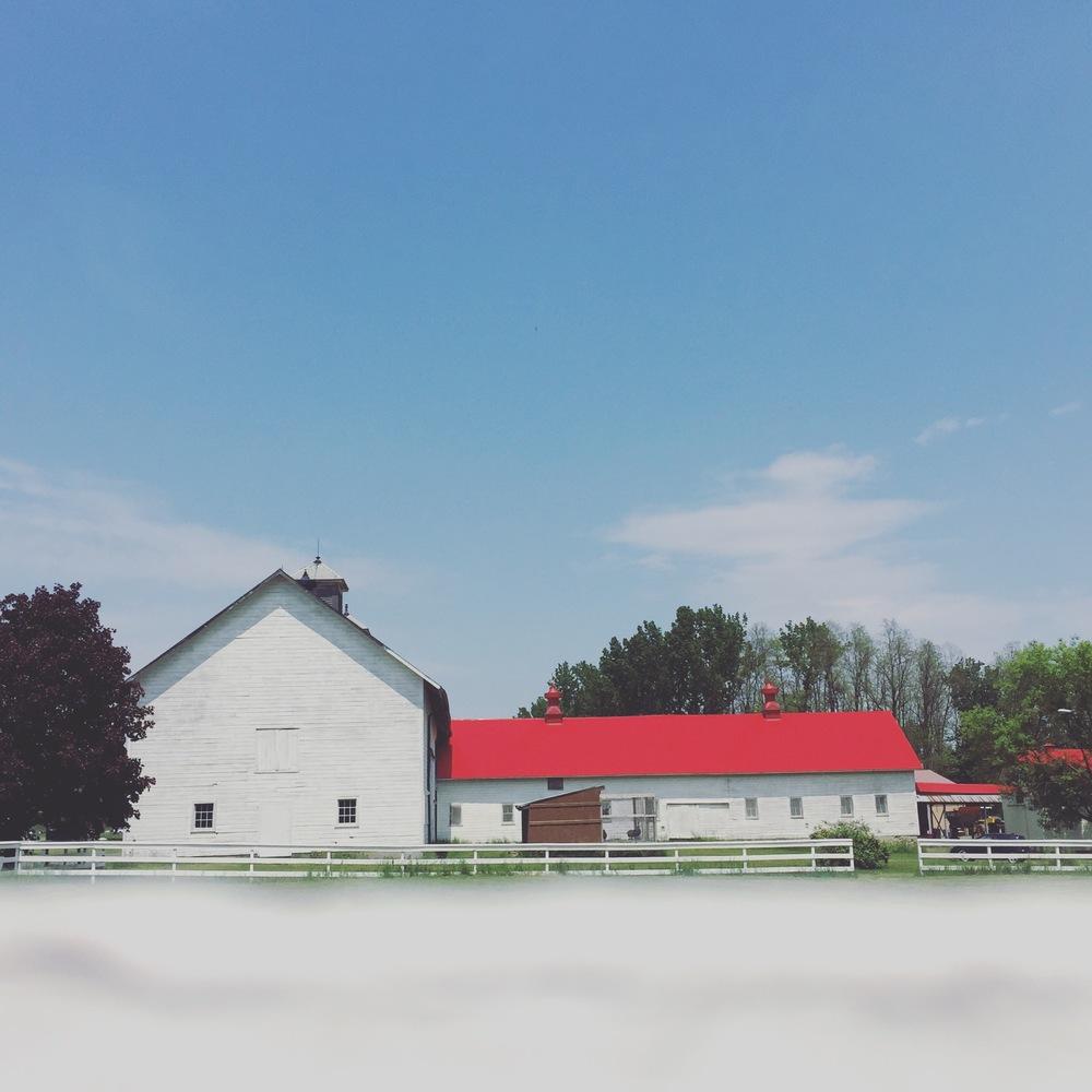 barn wedding venue ny
