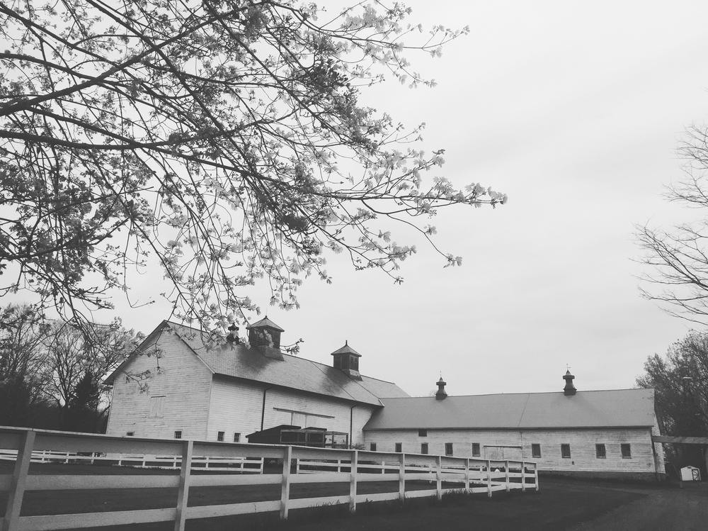 albany ny barn wedding venue