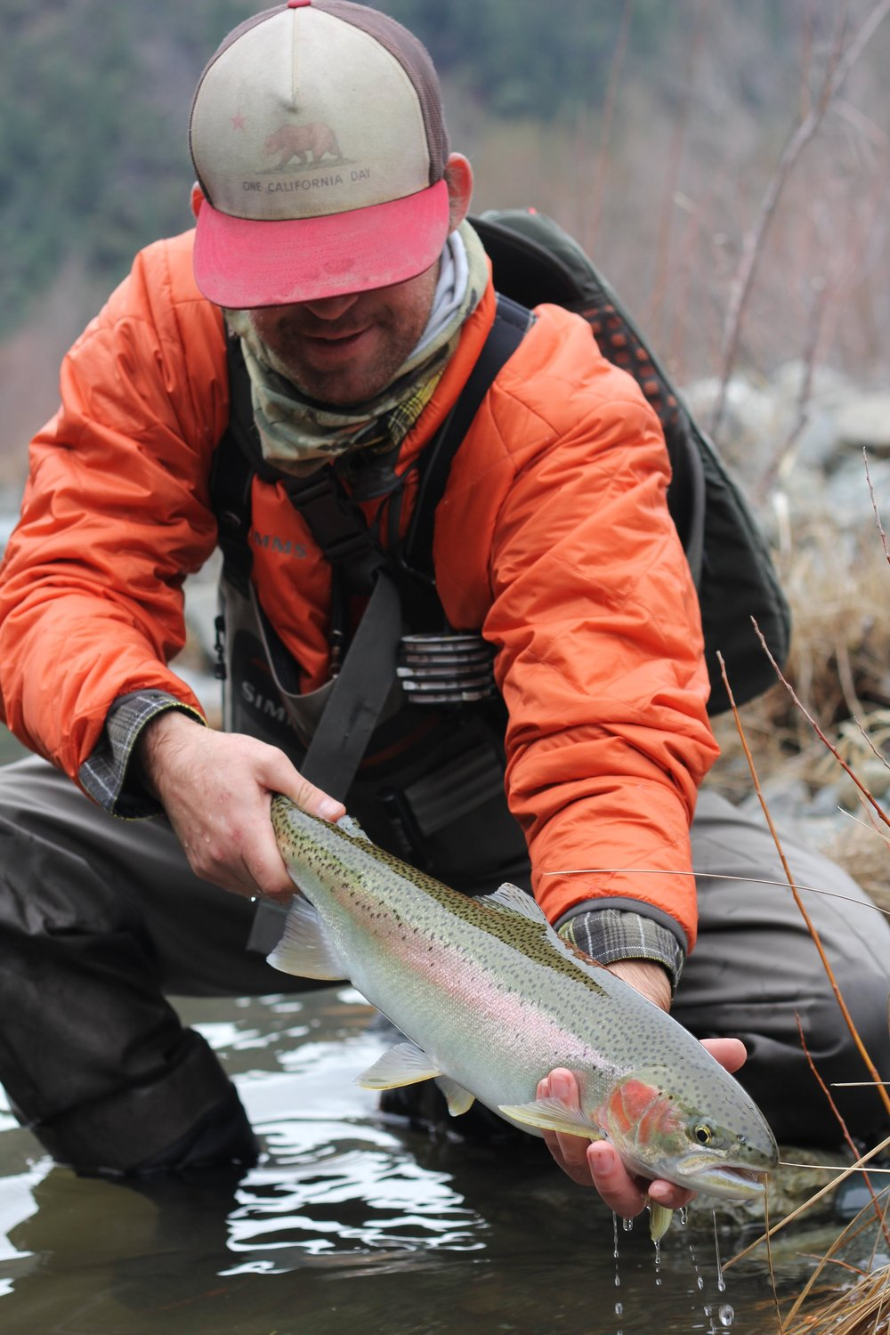 "You will remember every fish that you connect with on the swing.  This perfect Trinity River steelhead chased down a ""Brother In Law."""