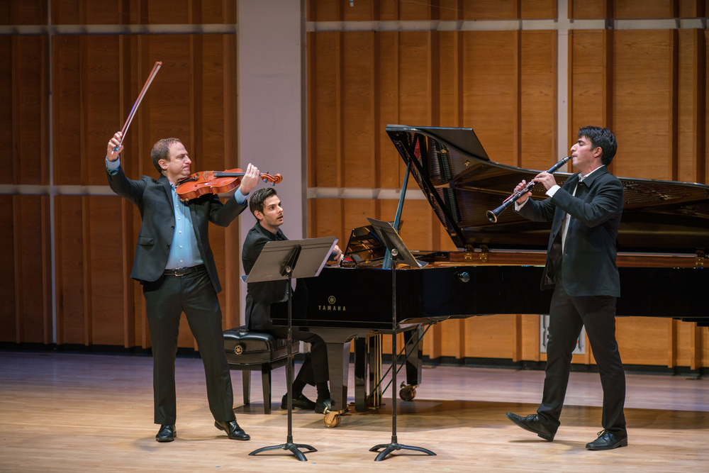 Israeli Chamber Project, chamber ensemble