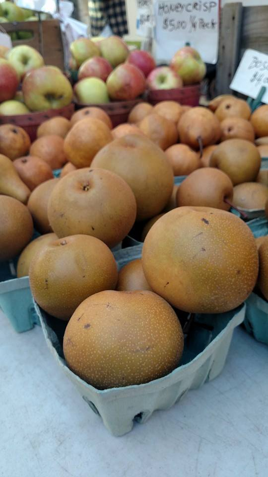 asian pears little river 2015.jpg