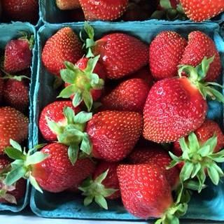 Berries 2015.jpg