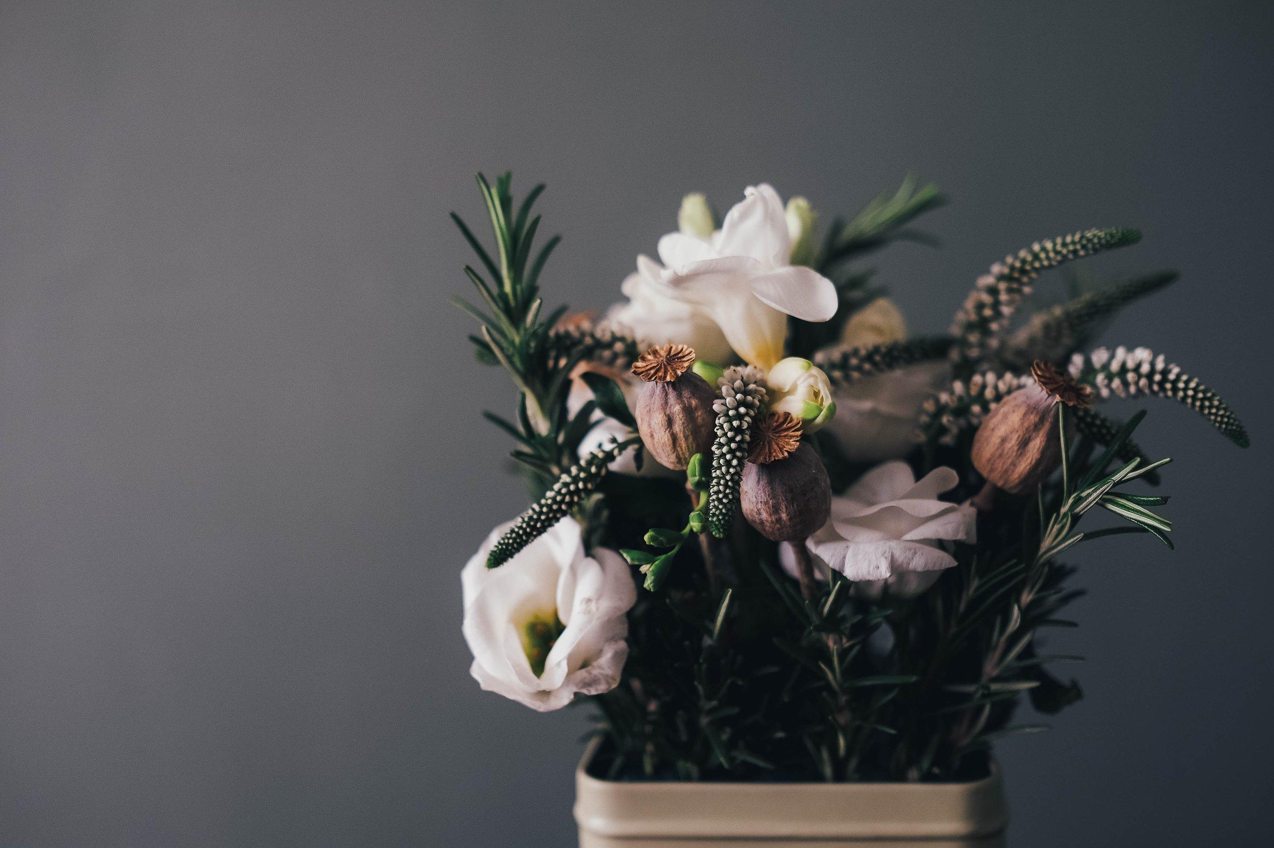 Recycle compost flowers rebloom annie spratt 59116g izmirmasajfo