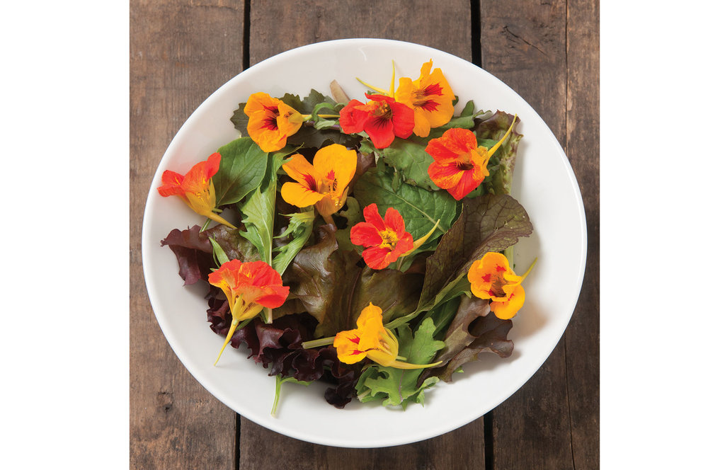 Mix of Asian greens, lettuce, kale, chard, arugula, edible flowers. Will vary throughout and by season.