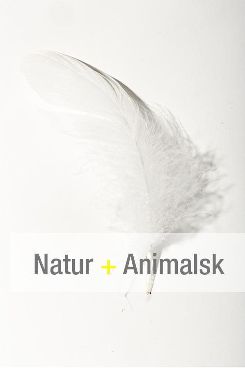 Natur + Animalsk