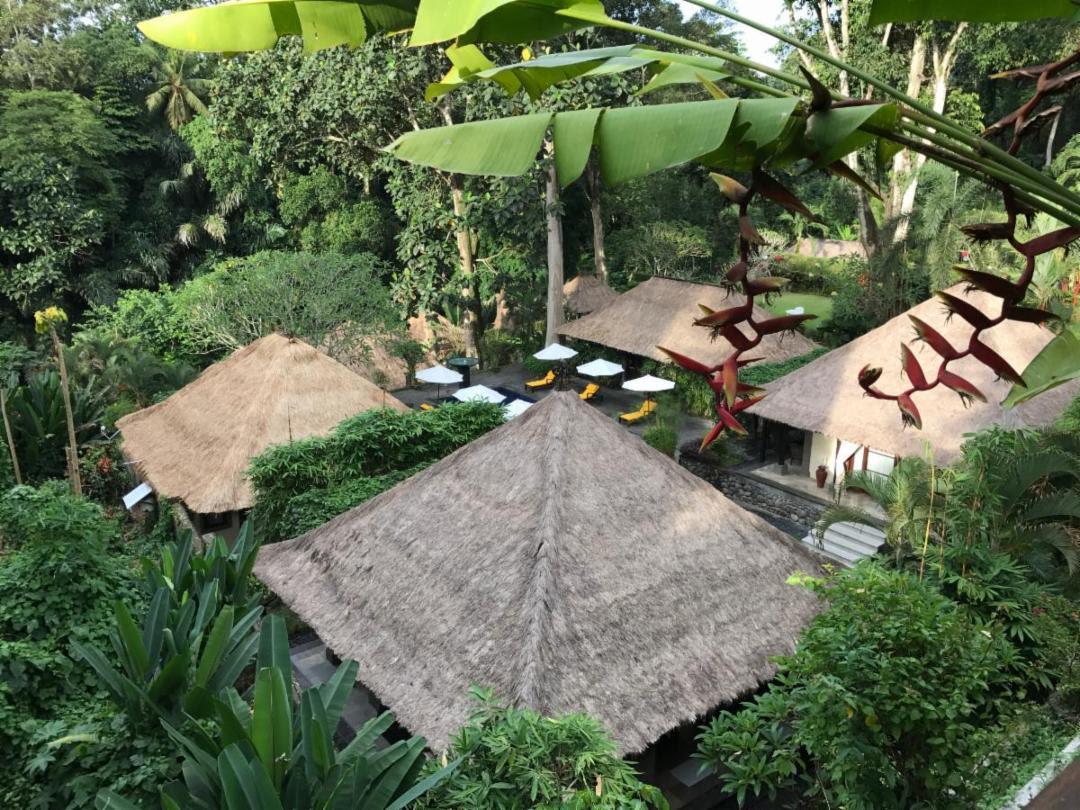 Self Care Like a Movie Star: Our Yoga Retreat to Sukhavati Bali