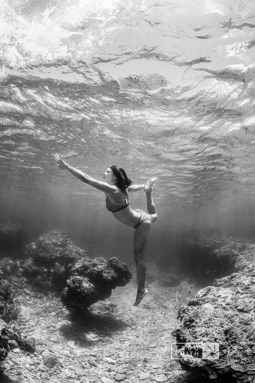 Reef DancerAmyIppoliti.jpg