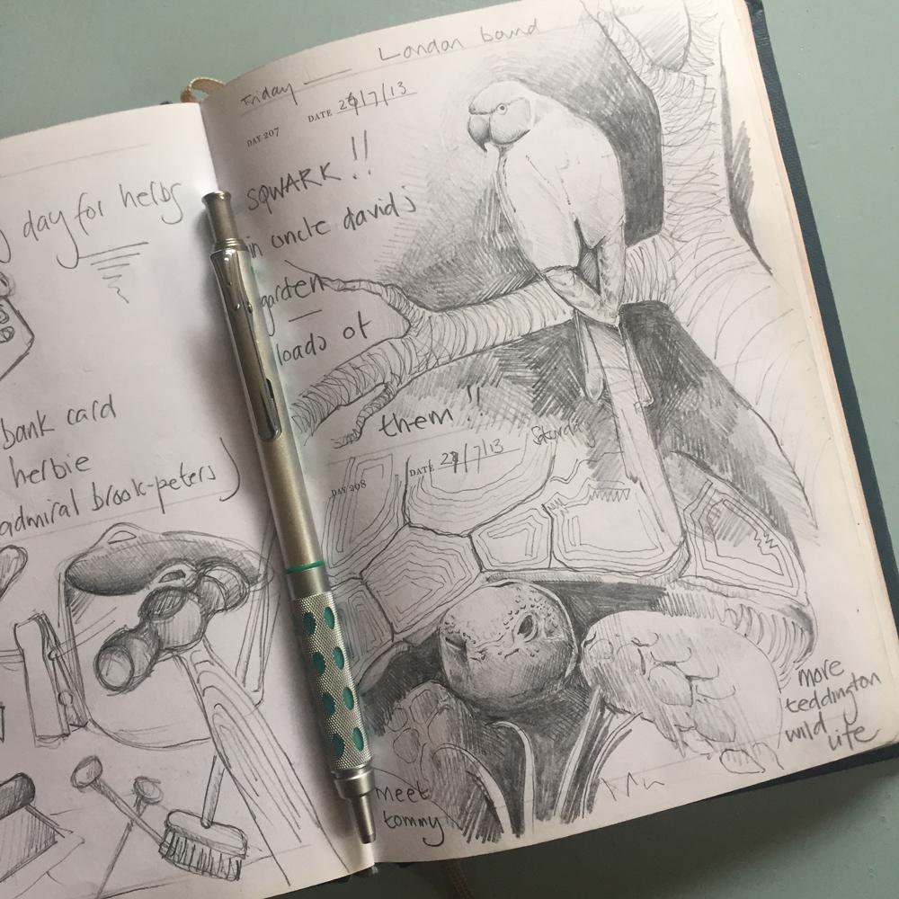Parrot-Sketch.jpg