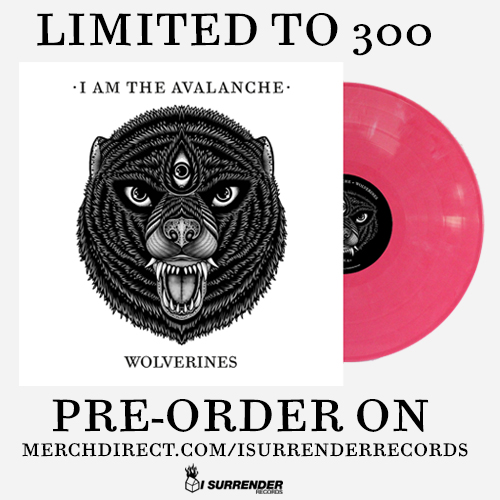 So here's the deal, there was such a high demand for I Am The Avalanche's new album Wolverines on vinyl that we moved quickly and ended up adding some additional colors to the first pressing. For those of you that missed out on the initial pre-orders, you'll be happy to know that you can order a copy of the album on opaque pink starting tonight at 12:01am EST through the I Surrender webstore. For all of you keeping track, here's the final breakdown of the colors: black/white swirl [ltd. 200] non-metallic transparent gold [ltd. 300] translucent red [ltd. 500] clear [ltd. 200] opaque pink [ltd. 300] translucent green [ltd. 500] The band will be selling copies of the gold on their upcoming US headlining shows. We'll keep you updated on where you can find the other colors soon! Also, for those of you in the UK, Rude Records has teamed up with Banquet Records for an exclusive limited picture disc pre-order of Wolverines. Wolverines out on March 18th