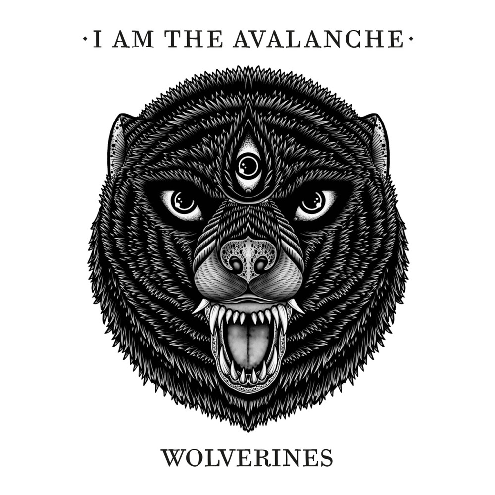 "We decided to kick 2014 off with a BANG! I Am The Avalanche's new album Wolverines will be out on March 18th! That's right, new year, new record, new songs. Listen to one of those songs ""The Shape I'm In"" over on Esquire now. Vinyl and CD bundles are available for pre-order through our webstore. The vinyl is limited to 1000 and pressed on black/white swirl [ltd. 200 + exclusive to I Surrender webstore], translucent red [ltd. 500], and non-metallic transparent gold [ltd. 300].  The band will be selling copies of the gold exclusively on tour. Yes, there is a new tour, but more on that soon…so stay close! In the mean time, listen to the new song and pre-order Wolverines. Happy New year!"