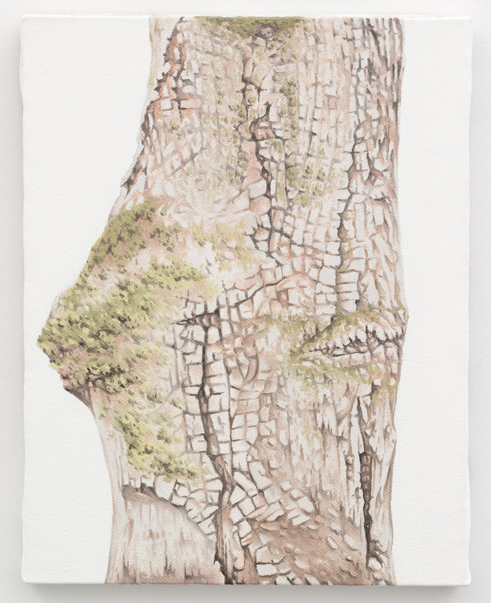 "Trunk No. 9,   2013,   oil on canvas 8 7/8"" x 6 7/8"""