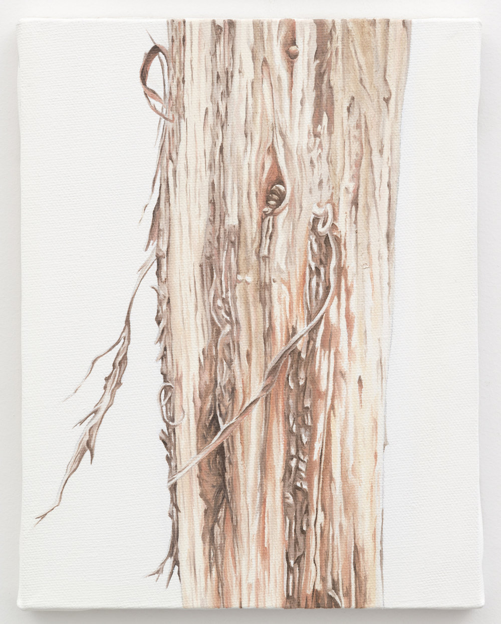 "Trunk No. 10,   2013,   oil on canvas 8 7/8"" x 6 7/8"""