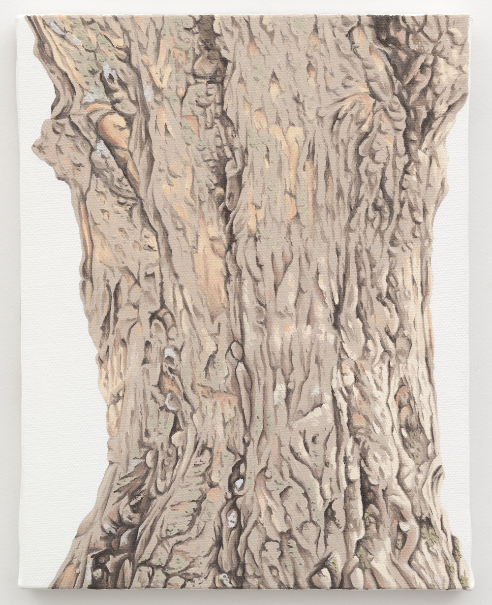 "Trunk No. 11,   2013,   oil on canvas 8 7/8"" x 6 7/8"""
